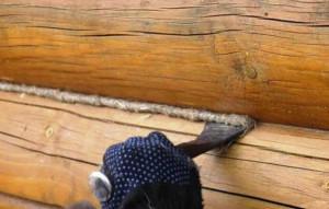 Фото: инструменты для конопатки сруба