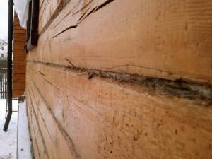 Фото: качественная конопатка залог тепла в доме