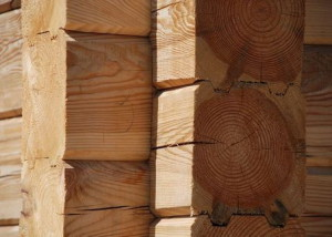 Фото: стенка сруба из профилированного бруса