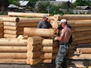 Фото: много компаний и строительных бригад занимаются постройкой сруба дома или бани под усадку